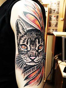 Katze tätowiert